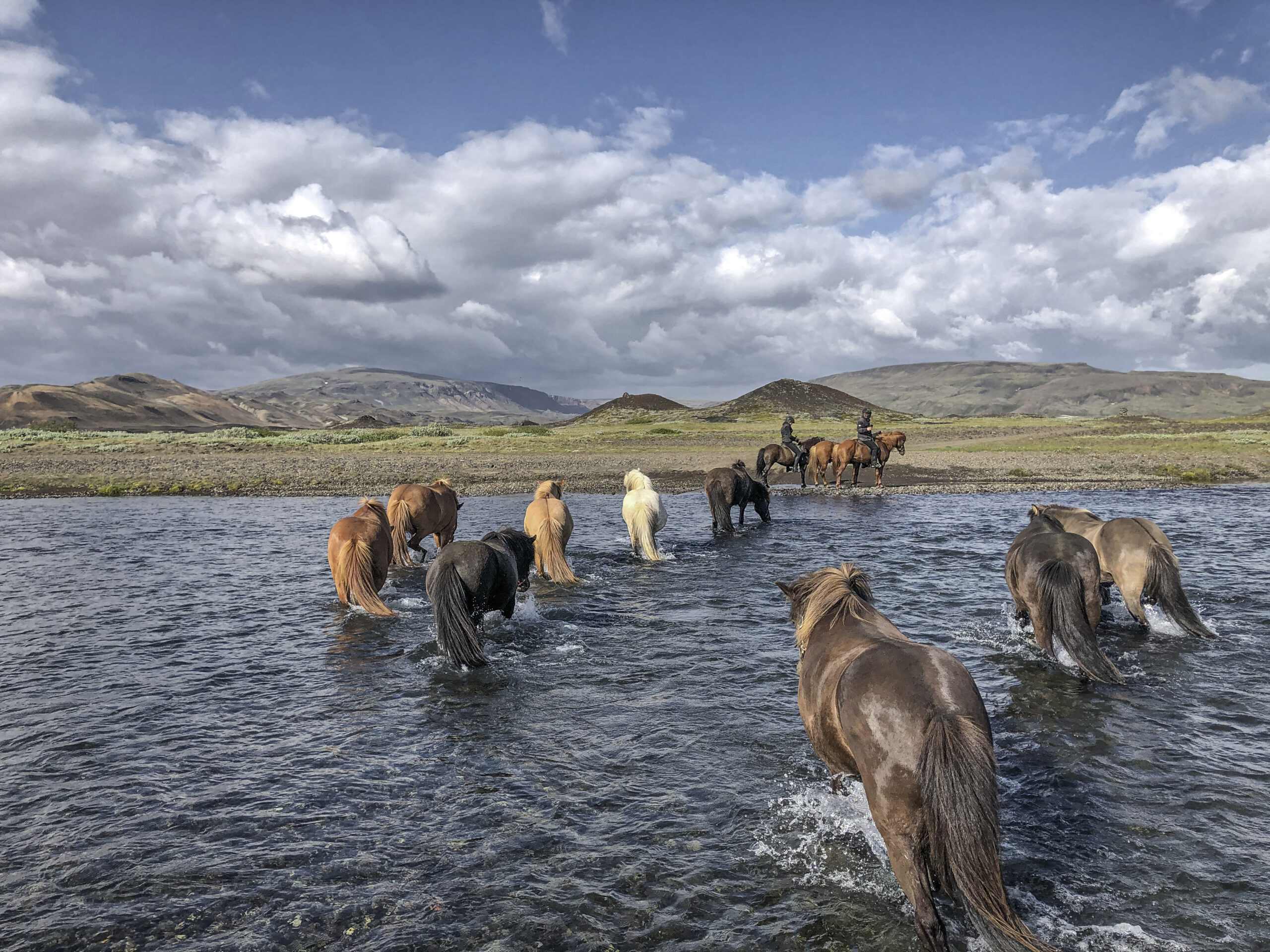 Riding tours in Iceland